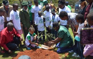 Dr Kalua PYA planting a seedling